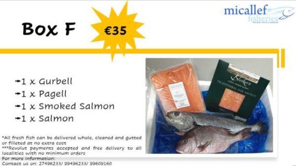 Fresh & Frozen Fish Box F